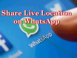 share-live-location-on-whatsapp