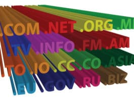 Introduction to Domains
