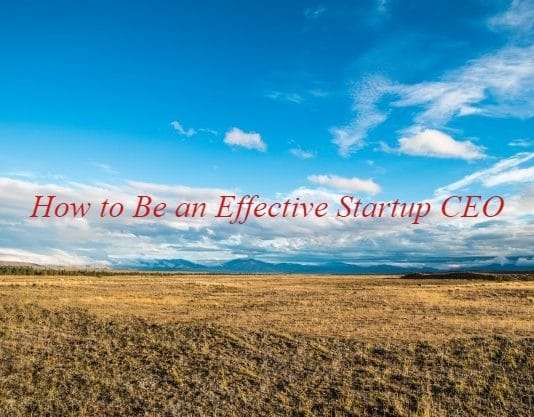 How to Be an Effective Startup CEO